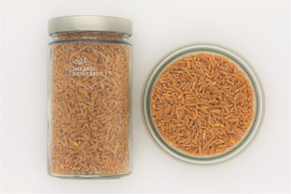Bio Kamut (Khorasan-Weizen)